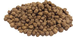 Superieur Premi mini lam rijst hond voor