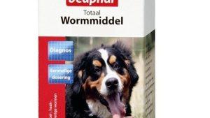 wormbestrijding